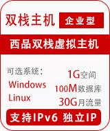 西品双栈企业型独立IP